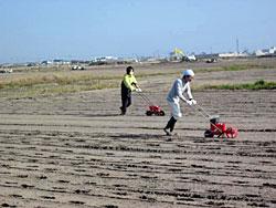 また、若林区の畑での瓦礫の撤去や塩害対策としての菜の花の作付け、石巻に水揚げされる魚介類の放射能検査の支援など、被災地の産業の復興につながるさまざまな支援活動も行っています。