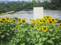 神在太陽光発電所(福岡県糸島市)