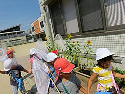 香椎照葉幼稚園(福岡県福岡市)